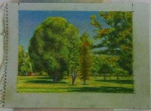 Landscape on light green paper