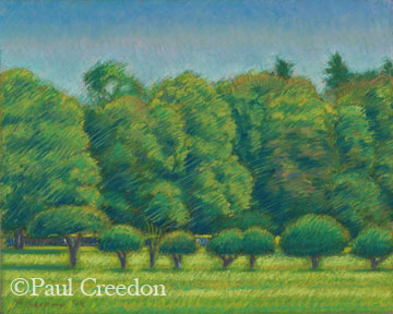 Irwin Tree Line, 10 x 8 inches, pastel on paper