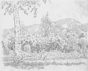 Landscape done in pencil